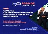 PAPO DE MARKETING